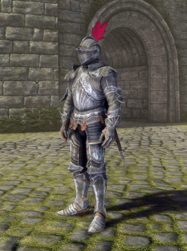Gothic Plate Armor