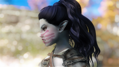 Zusha - standalone follower
