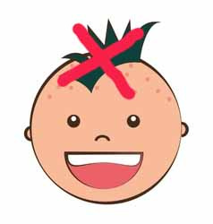 say not to the mohican