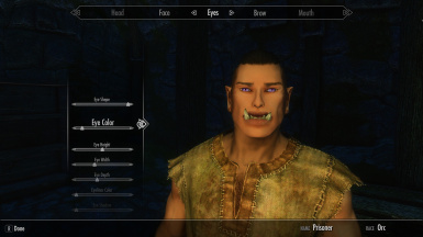 Extended character creation options ecco at skyrim special edition extended character creation options ecco maxwellsz