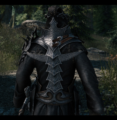 Armor with Re_Engaged ENB