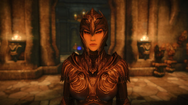 TL-Elven Armor - SSE pic by Daymarr