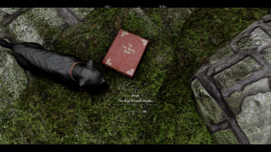 obsessed with staring at these covers in game (ft. Filbert)