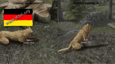 Dogs of Skyrim   Faendals Hund