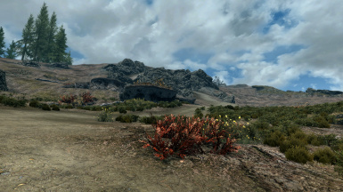 More yellow mountain flowers at skyrim special edition nexus mods screenshot70 screenshot72 distribution of yellow flowers compared to red flowers screenshot73 mightylinksfo