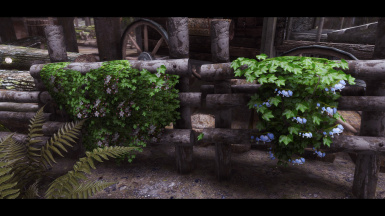 New look after the Ivy Hotfix