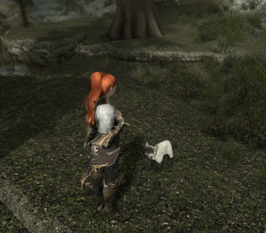 Cats in Skyrim