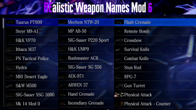 REalistic Weapon Names Mod 6