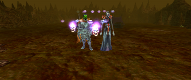 Shifter and Shapechange Expansion at Neverwinter Nights