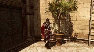 Assassin's Creed II - HD Shadow Map Res. Mod