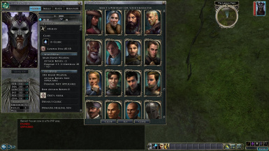 Pillars of Eternity Portraits