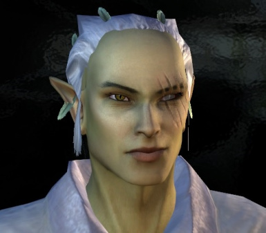 Male Wild Elf Hairs for Modded Heads