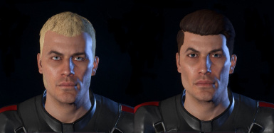Presets redesign - Male Ryder