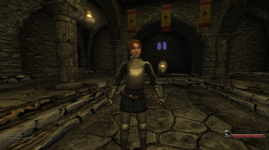 Female Meshes on Armour