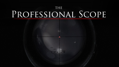 The Professional Scope
