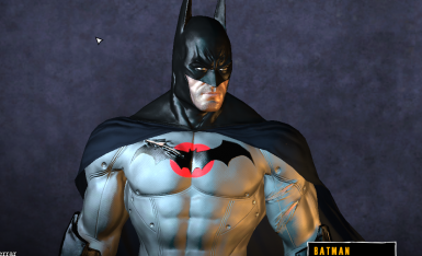 Batman Flashpoint skin