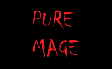 Play as pure mage