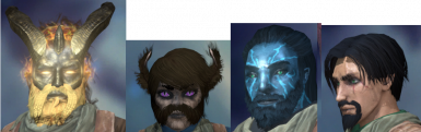 Facial hair for all (except Wild Orlans)
