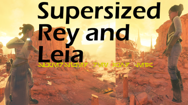 Supersized Rey and Leia (Requested)