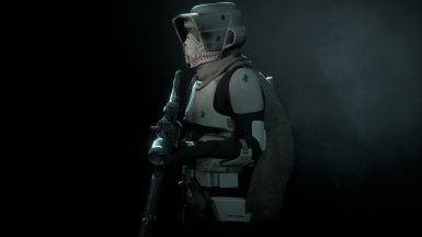 My personal Scout Trooper