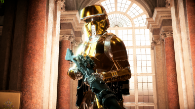 Gold and Silver Stormtroopers (Empire Era)
