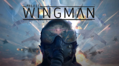 Project Wingman Support