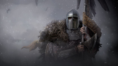 Mount and Blade II Bannerlord support