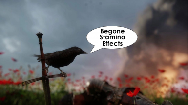 No Stamina Visual Effects