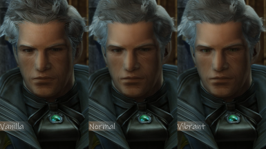 Enhanced Face Textures - NPC Pack 1.1.1