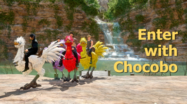 Enter with Chocobo