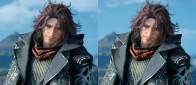 HD Ardyn Scarf and Hood
