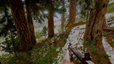 Realistic Graphic Mod Reshade