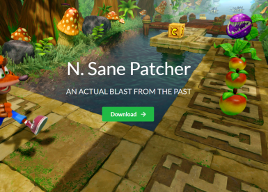 N. Sane Patcher