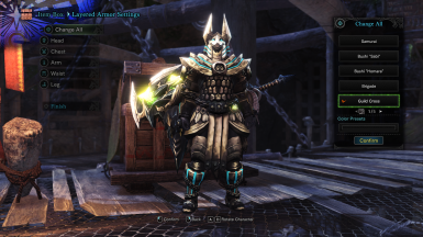 Helios X Armor Guild Cross Layered for MALE and FEMALE