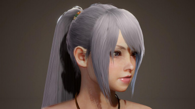 Longer Ponytail Hairstyle (Post-Iceborne)