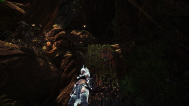 More Wedge Beetles 2.0 (Ancient Forest Section 11)