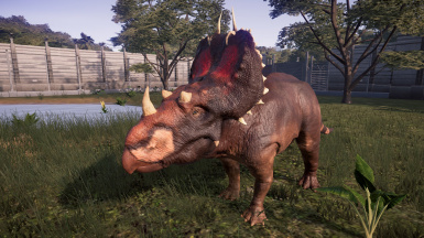 Spinops (New Species) by ANature7864 (Alternative skin)