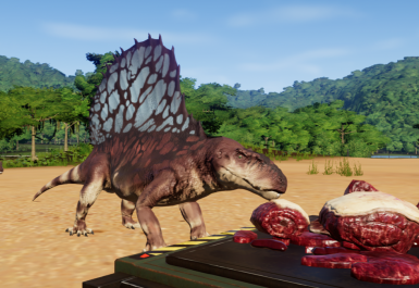 Dimetrodon New Species