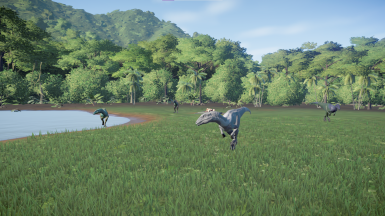 Arid and it's pack roaming (1.0)