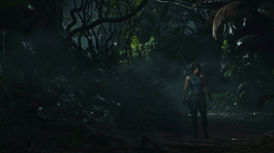 Shadow of the Tomb Raider Nexus - Mods and community