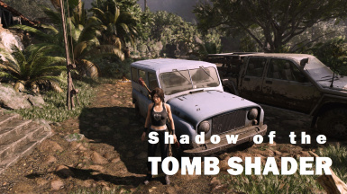 Shadow of the Tomb Shader - Reshade Preset and DOF