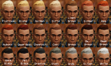 Hairspray - a Fallout 76 Hair colour mod