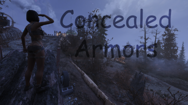 Concealed Armors