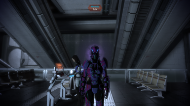 Displaying both colour customization as well as armour availability at the start of the game