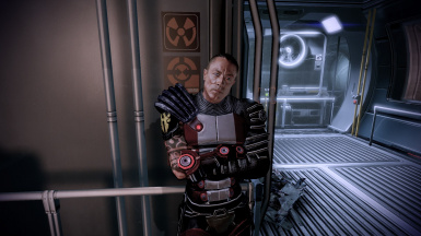 First Person Mode for Mass Effect 2