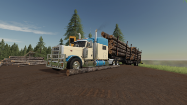 Peterbilt 389 with options and adconfig