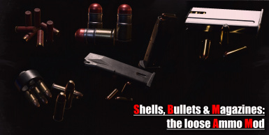 The loose Ammo Mod - Shells - Bullets and Magazines
