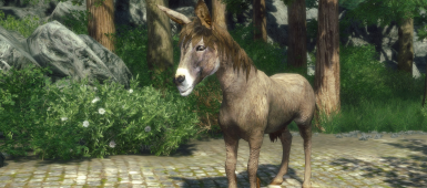 Whirlwind Unleashed - Better Donkey Texture and Model