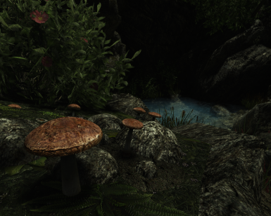 Mushrooms - High Poly - Old