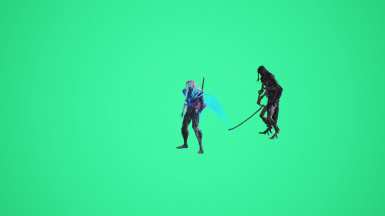 Chroma Key Green Screen Voids